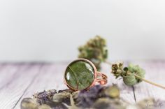 Fern green  copper ring with real dried leaf. от FriendMeBijou