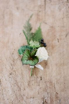 Eco-friendly boutonniere made with foraged and potted greenery // contemporary organic winter wedding inspiration in Finland by Hey Look & Petra Veikkola