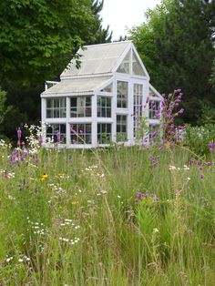 A stunning house of glass ... Potting in my meadow!