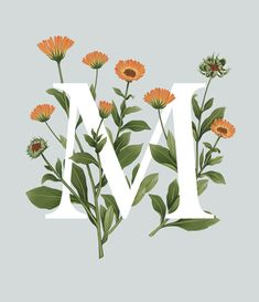 Exploring the fascinating range of edible flowers, this illustrated alphabet combines strong typography with delicate gouache artwork. Influenced by botanical studies and educational wall charts this collection offers anyone the opportunity to discover fa…