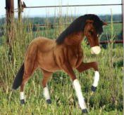 85 Best Horses Images Horses Horse Equestrian