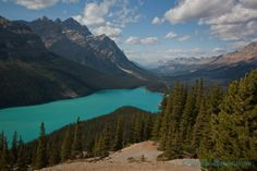 view of peyto lake and mountain valley in banff national park
