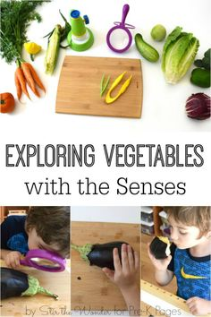VEGGIES Science for Kids: Exploring Vegetables with the 5 Senses. Use vegetables to engage all the senses. Perfect for a study of the 5 senses at home or in your preschool, pre-k, or kindergarten classroom! - Pre-K Pages Nutrition Education, Nutrition Activities, Kids Nutrition, Health And Nutrition, Cheese Nutrition, Nutrition Guide, Nutrition Poster, Universal Nutrition, Nutrition Month