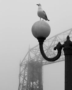 Great picture of the Duluth Lift Bridge.