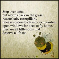 Reminds me of a certain young lady (sorry but as much as I love you - I admit I kill spiders and bugs) but I still love you!