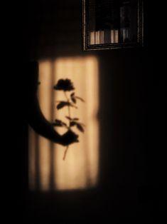 Creative Shadow Photography - Dramatic Look Effect Ideas Shadow Photography, Grunge Photography, Creative Photography, White Photography, Reflection Photography, Photography Aesthetic, Minimalist Photography, Photography Poses, Iphone Photography