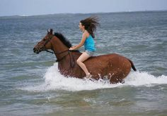 40 horsey things to do before you die- Some of these are definitely on my bucket list!!!
