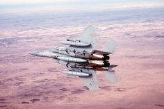 Air Force Eagle shot down an Iraqi Flogger during Desert Storm Us Military Aircraft, Military Helicopter, Military Life, Military History, Fighter Aircraft, Fighter Jets, F 16, Holland, Planes