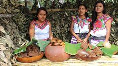 Destinaron 8 millones de euros a pueblos nativos centroamericanos