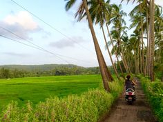 Ever since I gave up my home to embrace a life of travel, Goa has become my 'digital nomad refuge' in the monsoons.