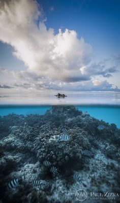 Waterworld - Tikehau Atoll - Tuamotus - French Polynesia