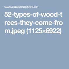 52-types-of-wood-trees-they-come-from.jpeg (1125×6922)