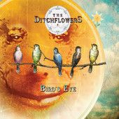 The Ditchflowers!! Led by longtime friends Ed Woltil and Brian Merrill, two of the Tampa music scene's leading lights, The Ditchflowers represent a rare convergence of talent coming together in the right place at the right time.