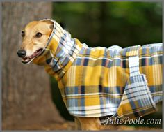Hope everyone is ready to Winterize your Pups! The weather is getting cold and I even saw snow the other day! If anyone has any store recommendations for the perfect Greyhound coats and accessories leave me a submission and I will share :) Dog Coat Pattern, Grey Hound Dog, Dog Items, Dog Jacket, Dog Sweaters, Italian Greyhound, Dog Dresses, Dog Coats, Dog Harness