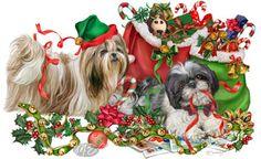 -Shih Tzu - Christmas Helpers