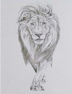 Whole-Lion-Tattoo-For-Women.jpg