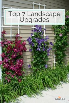 By introducing a lot of flowers, shrubs, and trees, you'll transform your backyard into a true natural oasis. [Backyard Ideas, Landscape Ideas, Backyard Landscape Ideas, Garden Ideas, Garden Trends, Backyard Trends, Vertical Garden Ideas, Summer Backyard Ideas]