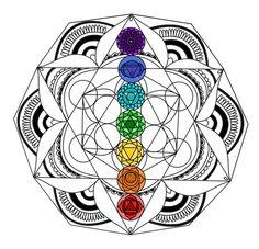Espacio Mandala