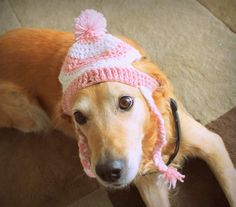 Dog Hat, Beanie for Dogs, Pet Hat, Winter Hat for Dogs, Puffball Beanie for Dogs, Large Dog Hat, Custom Dog Hat, Dog Photo Prop - pinned by pin4etsy.com