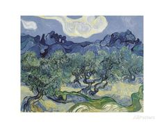 The Olive Trees, 1889 Posters by Vincent van Gogh at AllPosters.com