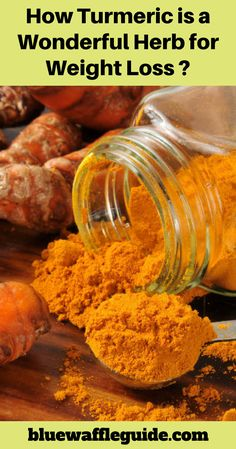 how turmeric is a wonderful herb for weight loss Nutrition Tips, Health And Nutrition, Health And Wellness, Nutrition Products, Health Tips, Sports Nutrition, Fitness Nutrition, Pineapple Health Benefits, Turmeric Health Benefits