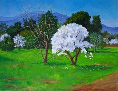 Patricia Musgrave – Almond Trees in Bloom http://patriciamusgraveapaintingblog.blogspot.com/