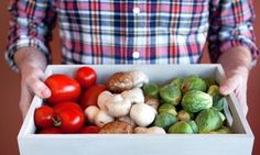 Groupon - One Week of Delivery of a Small or Medium Box of Organic Produce from Casco Bay Organics (Up to 46% Off) in Portland, ME. Groupon deal price: $19