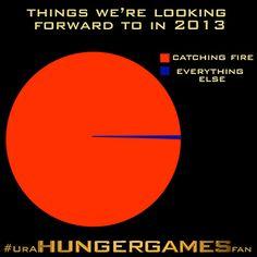 You know #UrAHungerGamesFan when...