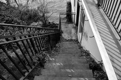 Stairway, leading down to the Glen Foerd Boathouse.