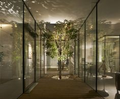 BMLZ Villa Office in Tongzhou District, China by Tsutsumi and Associates - ArchShowcase Tree Lighting, Outdoor Lighting, Architectural Materials, Fertility Center, Outdoor Trees, Basement Flooring, Interior Garden, How To Level Ground, Villa