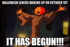 Creepy Funny Happy Halloween Quotes - Time to pick your spooky costumes, and dance on creepy music, have fun being mean because it's Halloween! Halloween Meme, Happy Halloween Quotes, Spooky Memes, Halloween 2020, Holidays Halloween, Vintage Halloween, Halloween Makeup, Halloween Decorations, Halloween Countdown