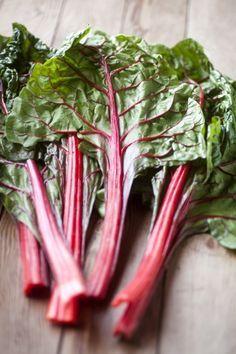Mangold ? Anbau Und Pflege Im Garten | Garten Blattsalat Pflanzen Pflege Tipps Garten