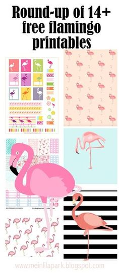 FREE printable flamingo printables - round-up