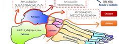 Aguilera, J; Heredia, JR y Peña, G. (2015) Instituto Internacional de Ciencias…