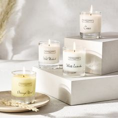 Candle Shop, Candle Jars, Lavender Scent, Lavender Candles, Oranges And Lemons, Orange Oil, The White Company, White Gift Boxes, Fragrance