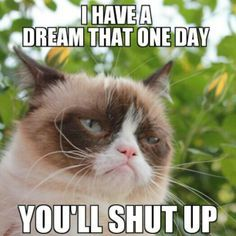 I have a dream that one day you'll shut up