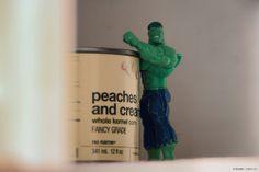 Hulk in the cupboard, stealing my corn #photography