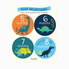 baby Monthly stickers Baby Milestones belly Stickers