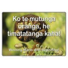 Bilingual Poster Set   Maori Posters: