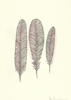 Detailed Modern Boho Feather Pencil Illustration with Palest Pink Watercolour - Original Modern Art - Home Decor