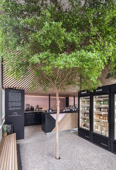 restaurant wall The Cold Pressed Juicery in Amsterdam designed by Standard Studio houses a living tree Design Shop, Coffee Shop Design, Design Studio, Store Design, Coridor Design, Tree Interior, Cafe Interior Design, Cafe Design, Interior Architecture