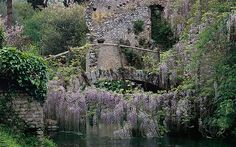 Ninfa, a beautiful rambling garden set in medieval ruins in Italy.