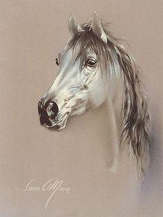 """""""Sara Moon"""" Bijan - artist from Tehran"""