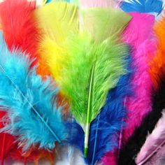 Rainbow Creations Coloured Feathers for Crafts