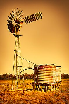 Windmill and water tank. We had a water tank near the house. I have memories of the smell of mint and lots or green ivy around the tank. Agra, Farm Windmill, Australian Icons, Australian Houses, Old Windmills, Country Scenes, Le Far West, Water Tower, Old Farm