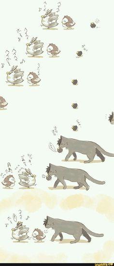 on Haikyuu! The owls Bokuto & Akaashi, the baby crow Tsukishima & the cat Kuroo. The owls Bokuto & Akaashi, the baby crow Tsukishima & the cat Kuroo. Kagehina, Kageyama Tobio, Bokuto Koutarou, Kuroo Tetsurou, Daisuga, Kuroken, Bokuaka, Haikyuu Akaashi, Akaashi Keiji