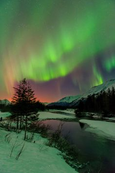 pinterest.com/fra411 #aurora #borealis - Aurora borealis over Portage Valley, Chugach National Forest, Alaska.Copyright Carl Johnson