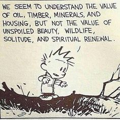 We seem to understand the value of oil, timber minerals, and housing, but not the value of unspoiled beauty, wildlife, solitude and spiritual renewal | Calvin and Hobbes.