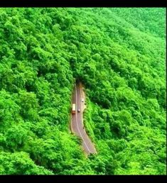 Photography of places to see around the world. All Nature, Green Nature, Amazing Nature, Beautiful Roads, Beautiful World, Beautiful Places, Beautiful Streets, Beautiful Scenery, Tourist Places