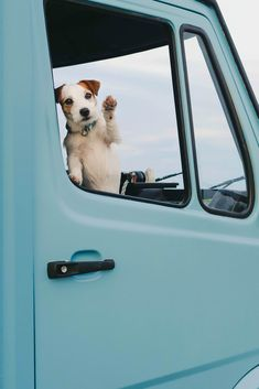 Vanlife ideas, driving around Europe. Scandinavian style campervan. Hiking and camping with dog.